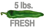 5 LB. FRESH MEDIUM ORGANIC GREEN CHILE