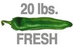 20 LB. FRESH MEDIUM ORGANIC GREEN CHILE